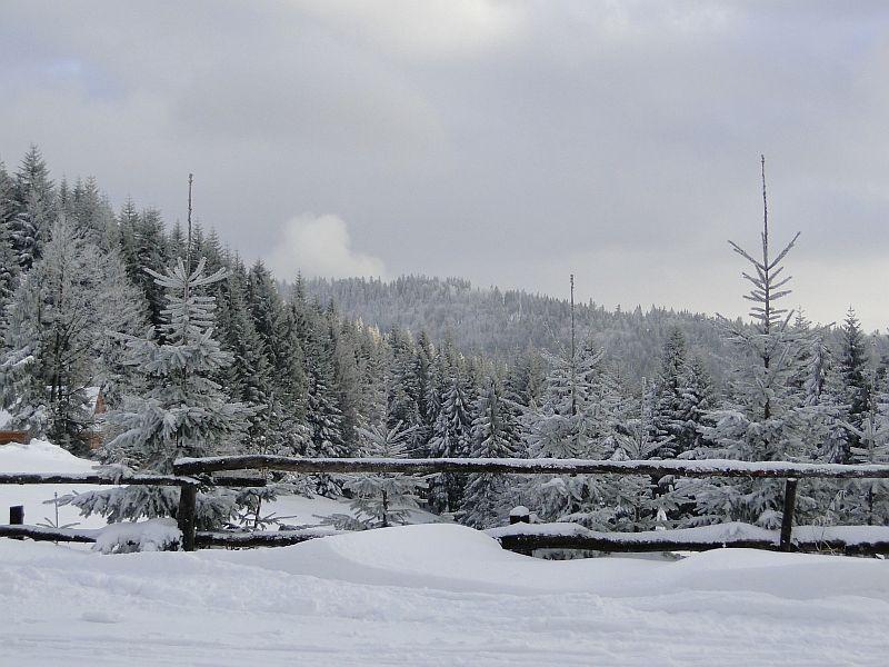 Zimowe wyjście Koła turystycznego 2016 - zdjęcie 12