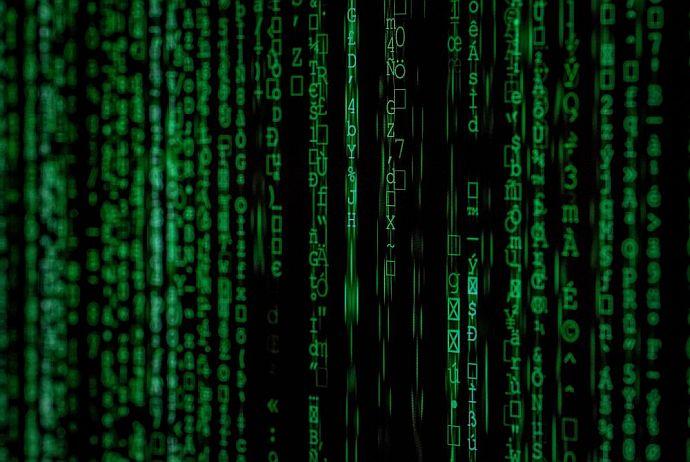 algorytm news