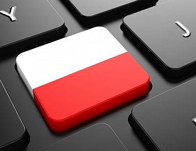 język polski mini