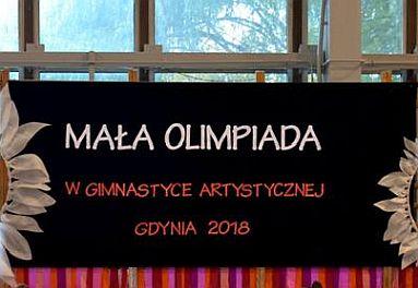 Mała Olimpiada Gdynia 2018 r.
